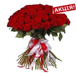 101 троянда 60 см