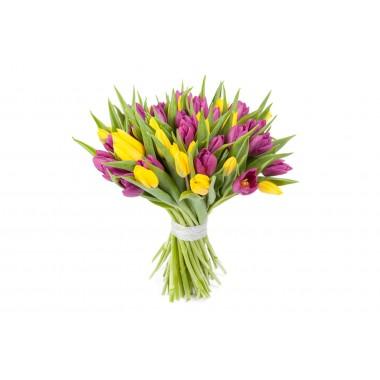 Букет 51 різнокольоровий тюльпан