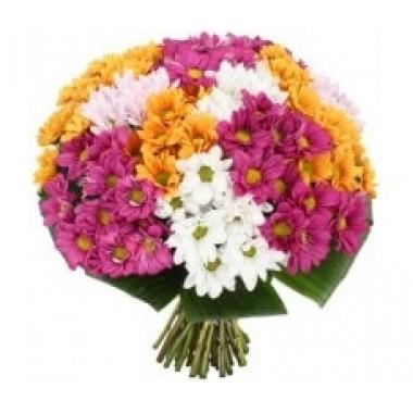 Букет 15 різнокольорових хтизантем
