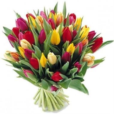 Букет 35 тюльпанів