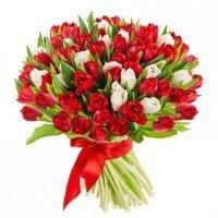 55 тюльпанів