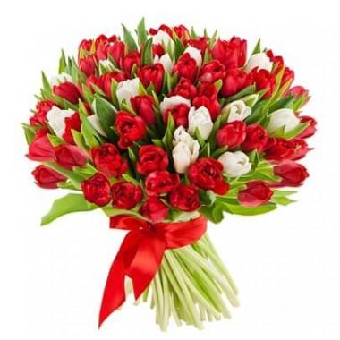 Букет 55 тюльпанів