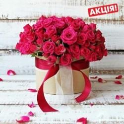 31 гілка кущових рожевих троянд