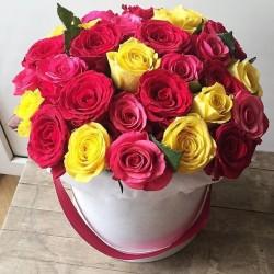 29 кольорових троянд